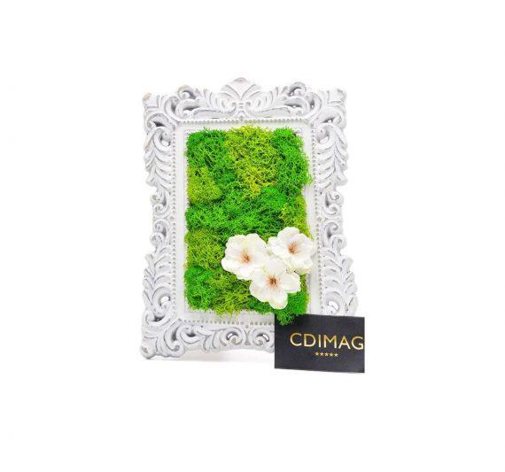 Aranjament cu licheni stabilizati si floare de cires