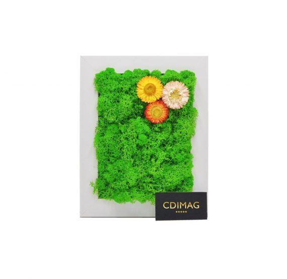 Aranjament floral cu licheni stabilizati si flori naturale
